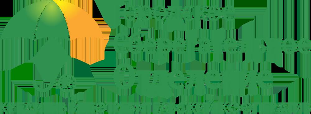 Деньги под залог птс в чите автосалон ремонту машин в москве